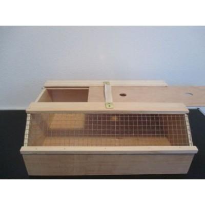transportkiste f r v gel transport versand im oberzeller. Black Bedroom Furniture Sets. Home Design Ideas
